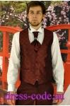 Мужской костюм 2106-3 Baggi цвета бордо